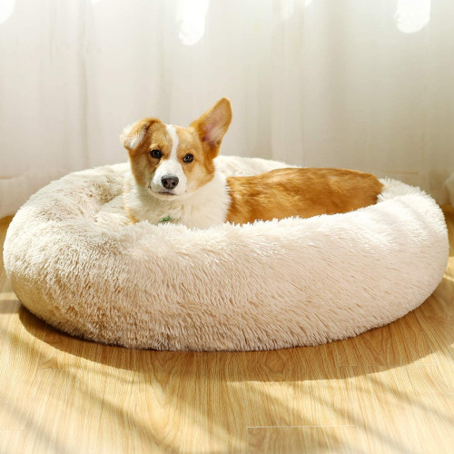 #10. JEMA Padded Dog Pillow