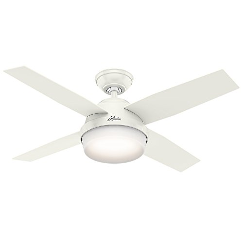 Hunter Indoor Dempsey Ceiling Fan with Light
